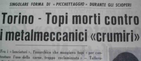 anarco_topo
