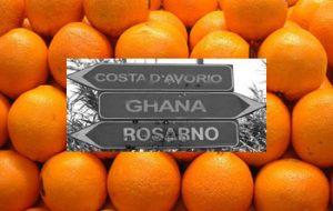 2014 09 01 sos_rosarno